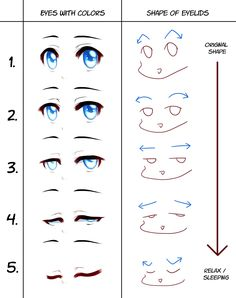 Animating Eyes Manga University Campus Store