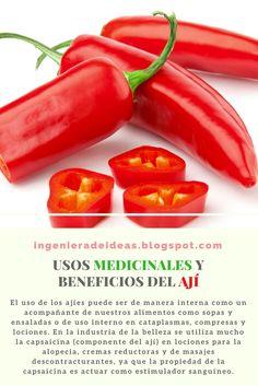 Usos Medicinales y Beneficios del Ají