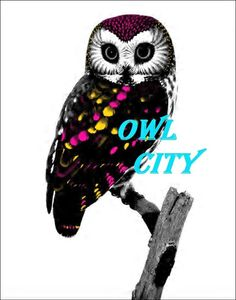 Owl City (Adam Young is a Christian) <--- yes, yes he is <3