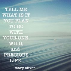 what will you do your one wild and precious life mary the entrance essay to plu asks you to answer this quote what are you going to do your one wild and precious life