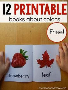 My 2-year-old LOVES these books about colors for toddlers. She carries them around in a little tin lunch box!