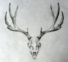 Do you want more creative design ideas of deer skull tattoos? Keep scrolling to see unique deer skull tattoo on chest designs. Antler Tattoos, Stag Tattoo, Hunting Tattoos, Head Tattoos, Cute Tattoos, Body Art Tattoos, Small Tattoos, Sleeve Tattoos, Fox Tattoos