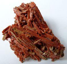 CROCOITE (Lead Chromate) crystals from the Adelaide Mine in Tasmania, Australia.