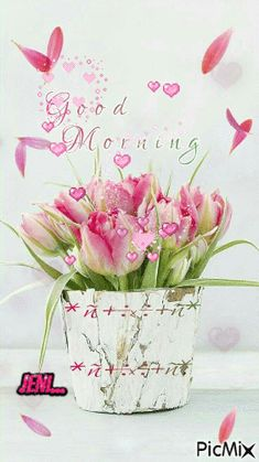 Everybody keeps searching for good morning images with beautiful flowers wish their friends good morning. In today's post, we have brought you a great collection of good morning images with beautiful flowers.