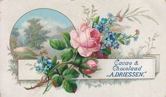 chromo cacao & chocolaad driessen - flower spray of pink roses and blue forgetmenots over circular view Vintage Cards, Vintage Images, Decoupage, Flower Spray, Vintage Artwork, Rose Design, Beautiful Flowers, Beautiful People, Pink Roses