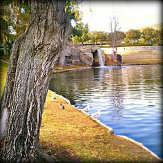English Springs Park in Chino Hills, California