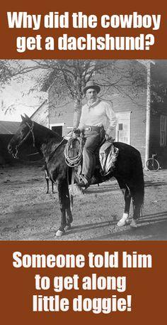 Why did the cowboy get a dachshund?
