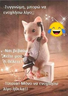 Very Funny, Funny Quotes, Jokes, Lol, Humor, Animals, So Funny, Funny Phrases, Animales
