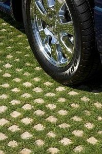 """Drivable grass ~ create a """"green"""" driveway using porous concrete grids that are planted with a ground cover between the cement 'pavers'.  Maybe not such a good idea for living in the northeast, but still pretty."""