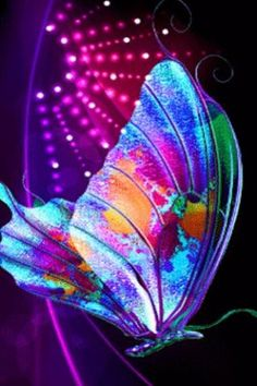 rainbow butterflies desktop wallpaper - Google Search