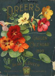 vintage label with painting of Nasturtiums