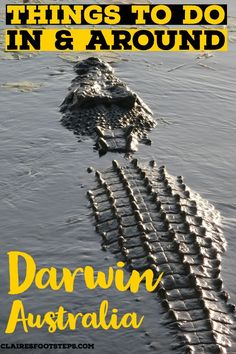 If you're looking for the best things to do in Darwin Australia, check out these Darwin tours for Kakadu National Park, Litchfield National Park, Darwin city centre tours and other things to do in the Northern Territory, Australia. Darwin Australia, Australia Tours, Visit Australia, Australia Travel, Places To Travel, Places To See, Travel Destinations, Travel Stuff, Travel Advice