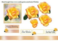 Yellow Rose Step by Step on Craftsuprint designed by Linda Whittles -  lovely yellow rose on a pretty background with sentiment tags - Now available for download!
