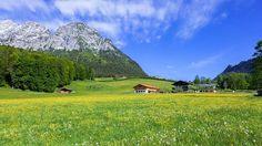Bauernhof Scheffaulehen
