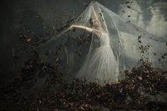 La Sylphide by Vlad-Stefan Matei, via Behance