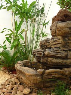 fuente de agua sobre piedras con bonsai y papirus