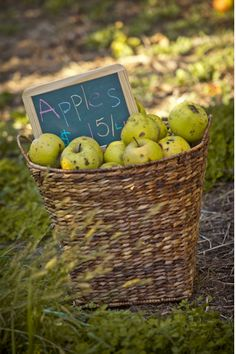 """Give me spots on my apples, but leave me the birds and the bees...""  ~Joni Mitchell"