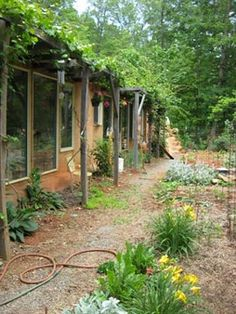 Earthship exterior - the garden carries on inside & outside the door