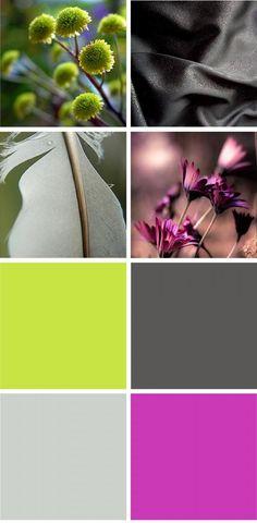 color inspiration, lime and fuschia, wedding colors, color card, color palette