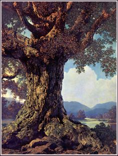 Ancient Tree by Maxfield Parrish. I like this painting because of the composition and environment. Beautiful Paintings, Beautiful Landscapes, Landscape Art, Landscape Paintings, Carl Spitzweg, Maxfield Parrish, Photo D Art, Art For Art Sake, Tree Art