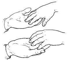 The Importance of Hands for the Person Who is Deafblind. Hand-Under-Hand Technique and so much more. Very in-depth.