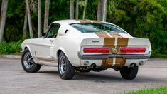 Ford Mustang Shelby, Shelby Gt500, Mustang Cars, Ford Mustangs, Old Muscle Cars, Best Muscle Cars, Performance Engines, Mustang Fastback, Pony Car