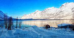 Fjords around Tromso See The Northern Lights, Tromso, Aurora Borealis, Mystic, Mountains, World, Travel, Northern Lights, Viajes