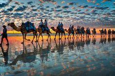 Caravanas de camelos na Austrália