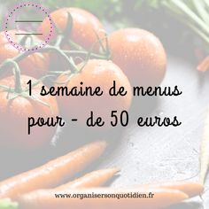 Une semaine de menus pour moins de 50 euros - Organiser son quotidien - Expolore the best and the special ideas about Budget meal planning Weekly Menu Planning, Budget Meal Planning, Cooking On A Budget, Budget Meals, Budget Recipes, Healthy Breakfast Recipes, Healthy Dinner Recipes, Euro, Batch Cooking