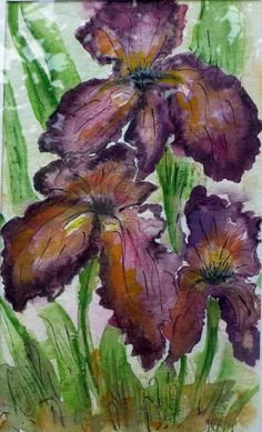 Buy PURPLE IRISES - painting, bloom irises painting, floral painting, original watercolor, Watercolor by Pacoshabe Art on Artfinder. Discover thousands of other original paintings, prints, sculptures and photography from independent artists.