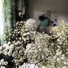 Pitsihääpäivän ilta  #hääpäivä #harsokukka #kukkia #koti #myhome #home #flowers #instahome #instaflower