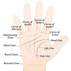 Learn Palmistry Hand lines names and work palmistry astrology Palmistry Reading, Hand Lines, Love Tarot, Everything About You, Psychic Abilities, Book Of Shadows, Numerology, Wicca, Knowledge