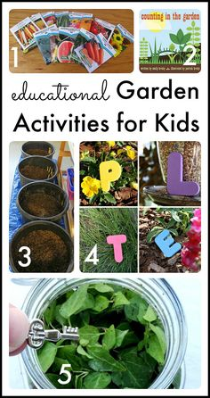 A collection of activities to try out with your budding gardeners!  Books, science, literacy, and additional resources.