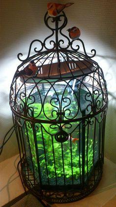 My aquarium at home :)
