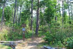 10. Ouachita National Forest (LeFlore and McCurtain County) Hidden Places, Places To Visit, Road Trip Destinations, Travel Oklahoma, Nature Center, Finding Peace, National Forest, Get Outside, The Fresh