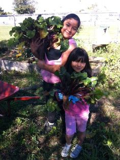 """Pauline is a teacher at Vista Square Elementary in Chula Vista, CA. She tell us, """"Our garden is organic.  We teach children how to compost and we even have a worm bin.  Children study the life cycles of the plants and flowers in our garden.  We have shrubs that are drought tolerant and attract butterflies and birds."""" #diggingdeeper"""