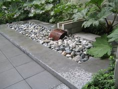 10th @ Hoyt - Portland, OR - Another rainfall basin - in the rain