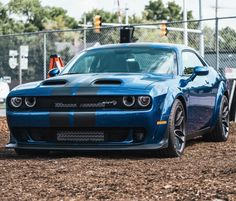 505 Best SRT DEMON, HELLCAT, REDEYE Challengers ONLY! images