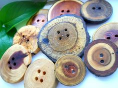 Tree Branch Wood Buttons