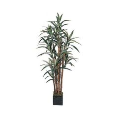 Nearly Natural 5' Yucca Silk Tree, Green ($124) ❤ liked on Polyvore featuring home, home decor, floral decor, green, yucca tree, artificial trees, green home decor, fake tree and nearly natural silk flowers