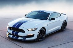 Report: Ford Shelby GT350R, GT successor, F-150 Raptor and more rumored for Detroit debut