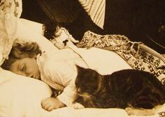 Antique Stereoview Sleeping Child w Doll and Cat American Stereoscopic Photo | eBay
