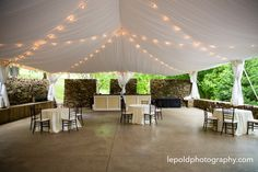 Pamela Lepold Photography services Northern Virginia, Washington DC and Maryland. Photojournalistic wedding, event, corporate and newborn photography. Wedding Tips, Wedding Planning, Wedding Day, Big Red Barn, Willow Grove, Romantic Wedding Receptions, Purple Table, Purple Themes, Most Beautiful Flowers