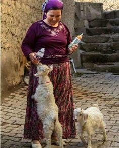 la nouvelle rubrique des copinautes Bronze Age Civilization, Turkish People, Village People, Women Life, Mother And Child, People Around The World, Pet Care, Baby Animals, Goats