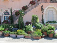 Disney Lady and the Tramp Topiaries (Lady looks a bit miffed  ;=)
