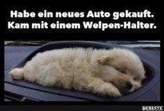 Habe ein neues Auto gekauft.. | Lustige Bilder, Sprüche, Witze, echt lustig