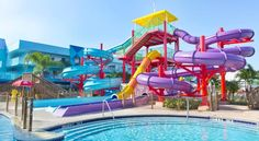 Flamingo Waterpark Resort Kissimmee This Kissimmee, Florida hotel features a heated, outdoor pool with a hot tub, water park facilities, and on-site restaurant. Walt Disney World and Universal Orlando Resorts are 20 minutes' drive away.