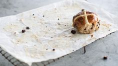 Dried cherry and chocolate hot cross buns recipe : SBS Food
