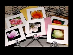 Greetings Cards, Mini Square Cards and Envelope Set - Itzy  Bitzy Square Cards - Blank Cards by LindaGeezFlowerPower