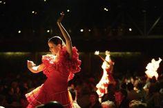 Flamenco nocturne... Nocturne, Costa, Dating, Concert, Image, Flamingo, Quotes, Concerts